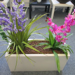 showroom umělých rostlin