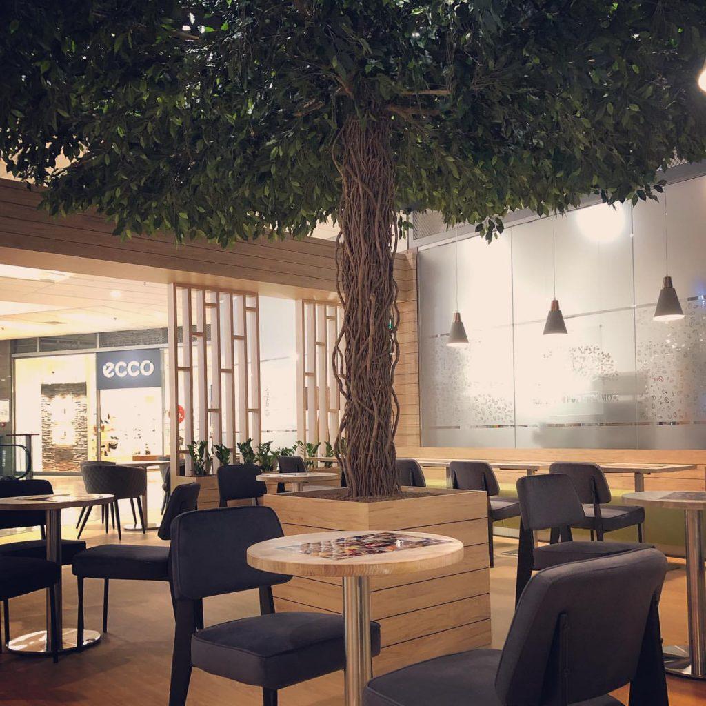 umělý strom fikus v kavárně