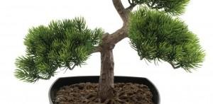 umělý bonsai jako živý