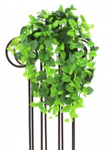 umělé popínavé rostliny jako živé