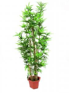 strom umělý bambus jako živý