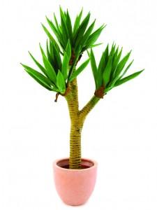 umělé palmy jako živé