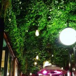 umělá živá stěna - vertikální zahrada