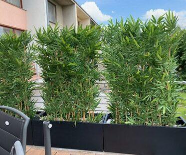 Umělý bambusový plot v soukromé rezidenci